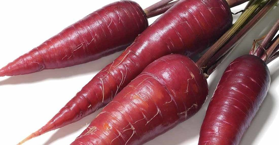 zanahoria-morada